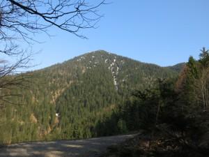 Noch 650 Hm zum Gipfel