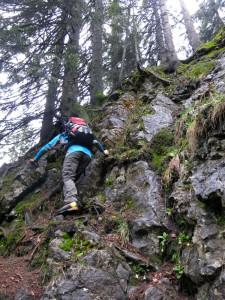 Schlüsselstelle auf dem Weg zum Vorderen Rappenkopf ist ein kurzer Waldeinser
