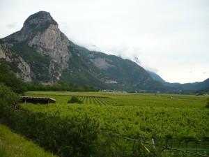 Der Dain picol thront über den Weinbergen