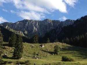 Die Nordwand der Benediktenwand von der Eibelsfleckalm aus gesehen