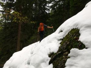 Schneestapfen im Wald