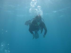 Schlecht angepasster Teilzeit-Meeresbewohner