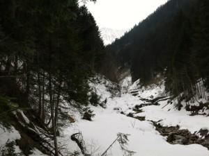 Immer am Bach entlang steigt man zur Gartner Alpe auf.