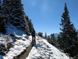 Nach oben hin wurde der Weg winterlicher.