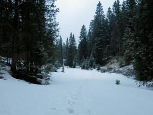 Winterlich ist es im Tal der Erzlaine.