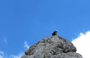 Boris grüßt vom Gipfel.