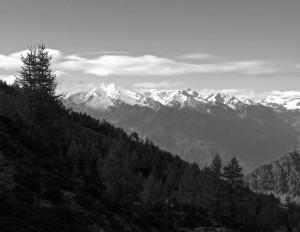 Die Gipfel der Ortlergruppe sind bereits schneebedeckt.