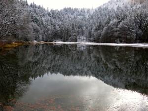 Der Suttensee zwischen Herbst und Winter
