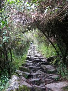 Lange Treppen führen auf den Berg.