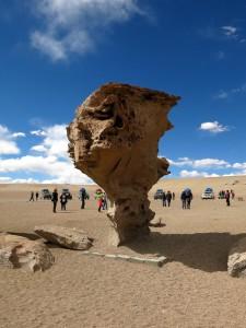 Der Árbol de Piedra