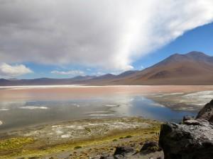 Rund um die Laguna erstreckt sich Wüste.