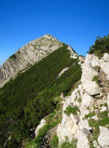 Der Steig zum Aiplspitz