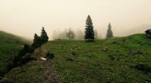 Der Nebel zieht ins Gartnertal.