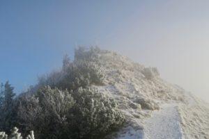 Der Gipfel des Jochbergs gibt sich winterlich.