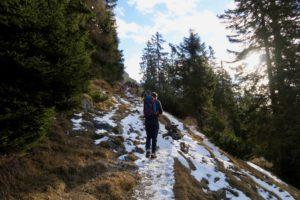 Viel Schnee lag nicht im Wald.
