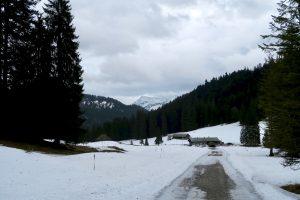 Die Straße zur Schwarzentennalm apert allmählich aus.
