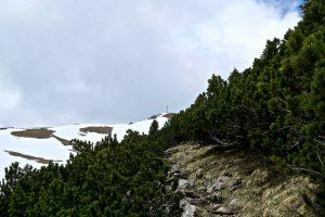 Der Gipfel der Kohlbergspitze ist bald erreicht.