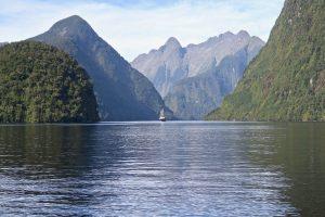 Beeindruckender Doubtful Sound