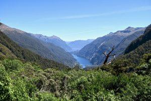 Auf dem Rückweg blicken wir noch einmal zum Fjord hinab.