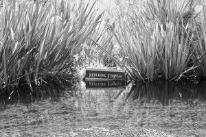 Die Mirror Lakes liegen an der Straße zum Milford Sound.