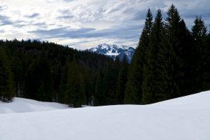 Im Abstieg blicke ich noch mal zum Brauneck hinüber.