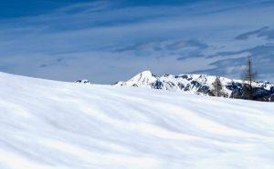 Beim Aufstieg wurde die Aussicht bald winterlich.