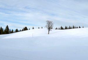 Noch hält sich der Winter im Gebirge.