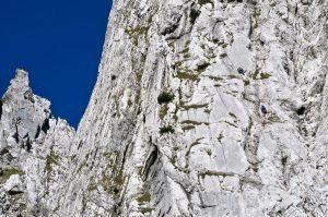 Dieser Kletterer befindet sich gerade in der Schlüsselstelle der Tour (V-).