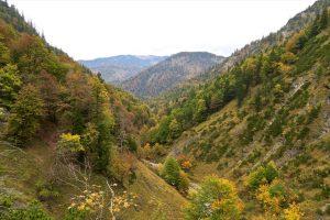 Rückblick übers Tal der Felsweißach