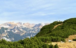 Bärenkopf-Gipfel, dahinter der Rofan