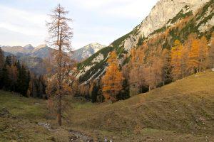 Letzte Herbsteindrücke