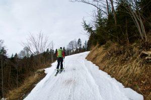 Forstweg zum Sonntagshorn
