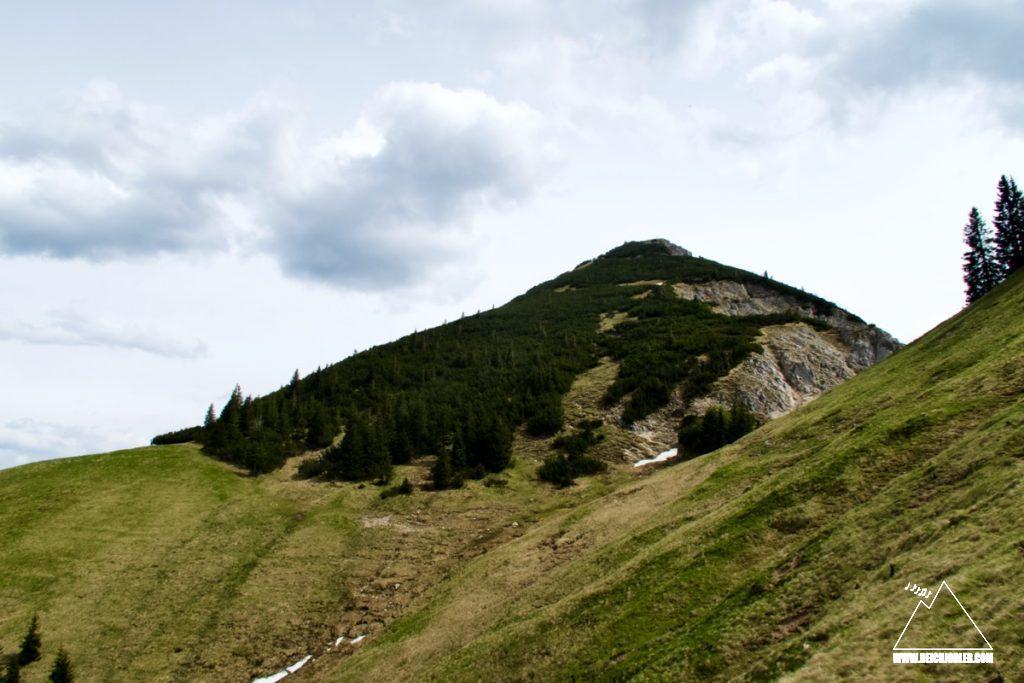 Hirschbichel Gipfelaufbau