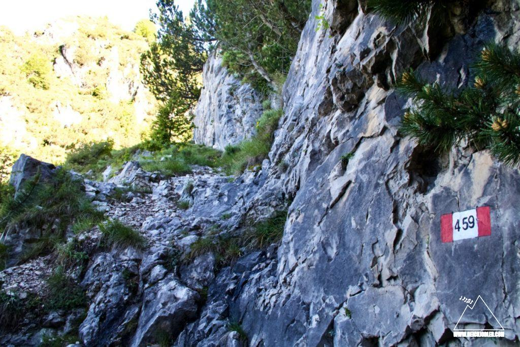 Weg am Monte Vies