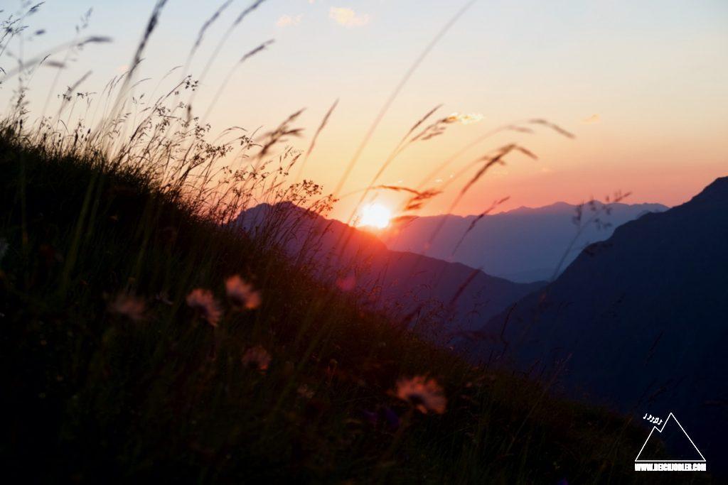Sonnenaufgang hinter der Wiese
