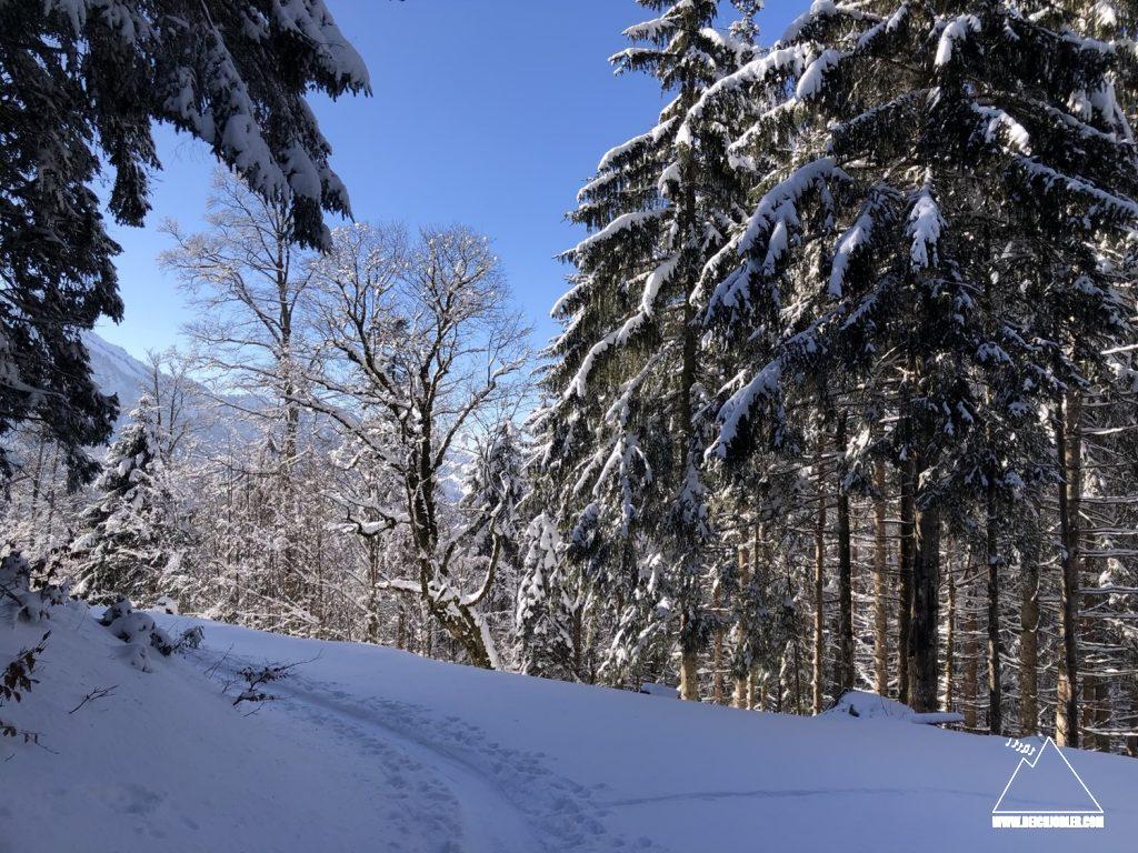 Abfahrt Rindalphorn