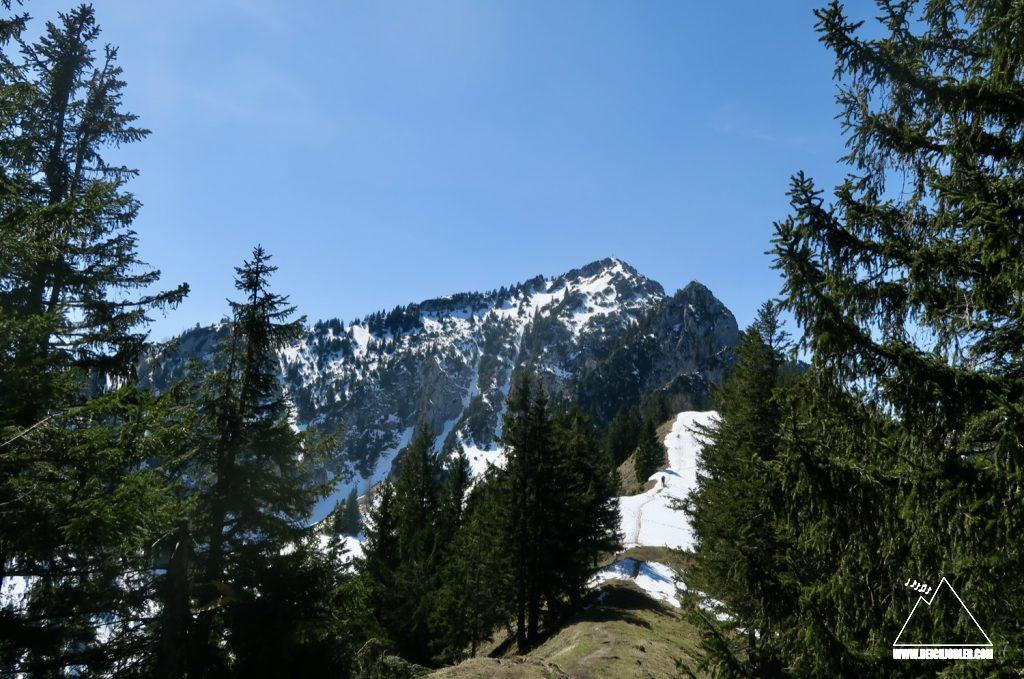 Hochsalwand und Lechnerkopf